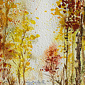 Fall Tree In Autumn Forest  by Irina Sztukowski
