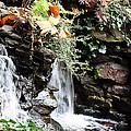 Fall Waterfall by Lauren Nicholson