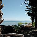 Fallen For Lake Tahoe by LeeAnn McLaneGoetz McLaneGoetzStudioLLCcom