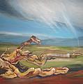 Falling Sky by Sophie Brunet