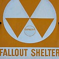 Fallout Shelter by Lynnette Johns