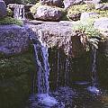Falls by Annella Grayce