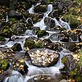 Falls Creek by Doug Lloyd