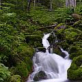 Falls Creek IIi by Doug Lloyd