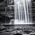 Falls by Fran Gallogly