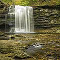 Falls Panorama by Fran Gallogly