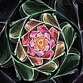 Fantasy Floral Expression 111311 by David Lane