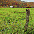 Farm Fence by Mark Dottle