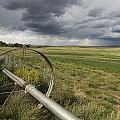 Farm Irrigation Sprinklers Next by Bill Hatcher