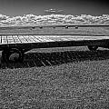 Farm Wagon In A Field On Prince Edward Island by Randall Nyhof
