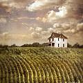 Farmhouse And Cornfield by Jill Battaglia