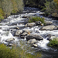 Feather River White Water by Frank Wilson