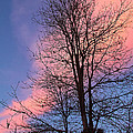 February Sunset by Mick Anderson