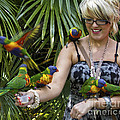 Feeding Rainbow Lorikeets by Clare Bambers