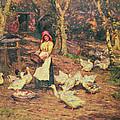 Feeding The Ducks by Joseph Harold Swanwick