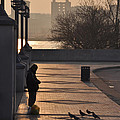Feeding The Pigeons At Dawn by Bill Cannon