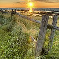 Fence Along The Shore by Philippe Widling
