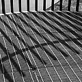Fence by Geoff Smith