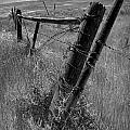 Fence Posts And Barbed Wire At The Edge Of A Field In Montana by Randall Nyhof