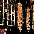 Fender In Brown by Chris Berry