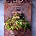 Fern In Antique Wall Planter by Elaine Plesser