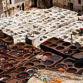 Fez Tannery by Ivan Slosar