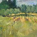Field In Italy by Elizabeth Taft