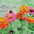 Field Of Flowers Impressionism by Jacob  Melnick