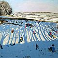 Fields Of Shadows by Andrew Macara