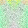 Fierfly Macro1 by Christopher Gaston