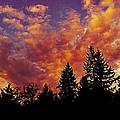 Fiery Evening by Kevin D Davis