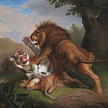Fight Of A Lion With A Tige by ohann Wenzel Peter