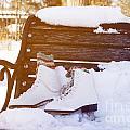 Figure Skates On The Bench by Igor Kislev