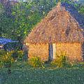 Fijian Bure by Diane Macdonald