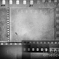 Film Negatives  by Les Cunliffe