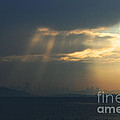 Filtered Light Through San Francisco Skyline by Wingsdomain Art and Photography