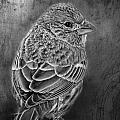 Finch Black And White by Debbie Portwood