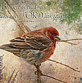 Finch Greeting Card With Verse by Debbie Portwood