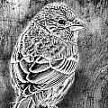 Finch Grungy Black And White by Debbie Portwood