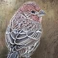 Finch Low Saturation by Debbie Portwood