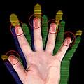 Fingerprint Biometrics by Victor Habbick Visions