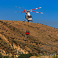 Fire Fighting by Robert Bales