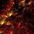 Fire-flowers by Klara Acel