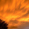 Fire In The Sky by Connie Dye