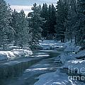 Firehole River In Yellowstone by Sandra Bronstein