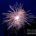 Fireworks 1 by Lloyd Alexander