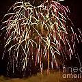 Fireworks II by Carol  Bradley