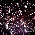 Fireworks Number 5 by Meandering Photography