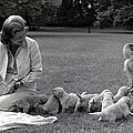 First Lady Betty Ford And The Familys by Everett