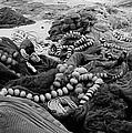 Fisherman Sleeping On A Huge Array Of Nets by Tom Wurl